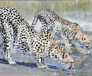 'At the water hole' by Neal Griffin 51.5 (h) x 90 (w) Framed / 40 (h) x 80 (w) unframed £1,100