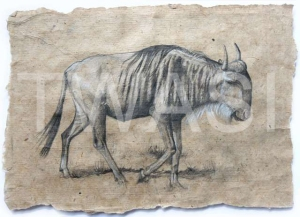 'Wildebeest' by Neal Griffin Pencil on handmade paper 43 (h) x 53 (w) Framed / 28 (h) x 38 (w) unframed £190