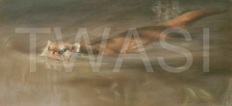 Out of the shadows by Vivien vivien.walters@btinternet.com http://www.vivienwalters.co.uk