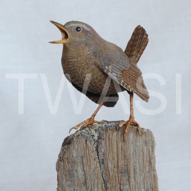 'Wren' by Pam Knight Mixed media sculpture 17 x 8 x 9 £490