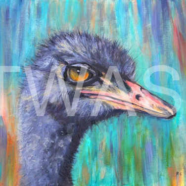 'I see you with my beady eye' by Ros Rouse Oil on canvas board Framed 48.5 x 38.5 £425