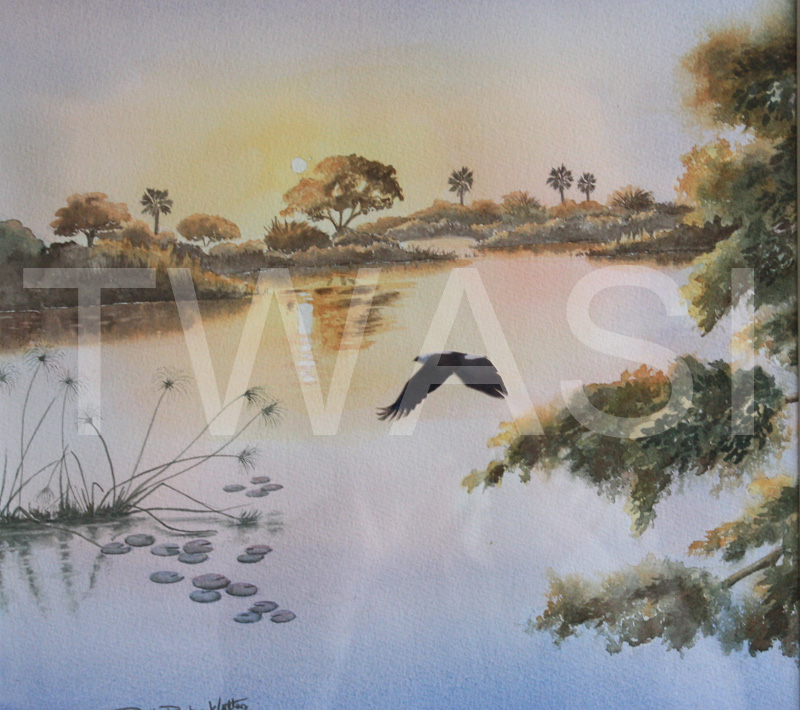 'Shades of Sunset' by Ruth Baker Walton Watercolour Framed size 50 x 47 cms £105