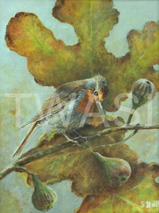'Robin with Figs' by Sandy Bell Acrylic Framed 33.5 x 26 cms Price £225