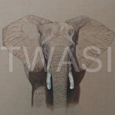 'Savute Elephant' by Christine Dadd Oil on untreated Linen Box canvas unframed 107x 92 £995