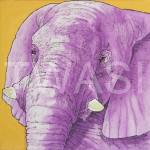 'Imperial Elephant' by Stephen Hand Acrylic with glitter Unframed 40 x 40 £300