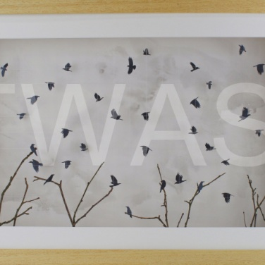 'Winter Rooks' by Sarah Trenchard 3D Paper and Wire 41 x 6 x 6 £560