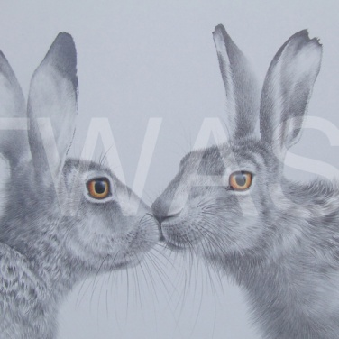 'The Kiss' by Valerie Briggs Graphite, pencil and coloured pencil Mounted and unframed 39 x 48.5 £475
