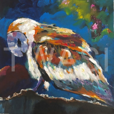 'Owl 1' by Varsha Manglam Acrylic on canvas Unframed 30x30 £40