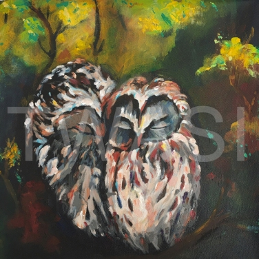 'Owl 2' by Varsha Manglam Acrylic on canvas Unframed 30x30 £40