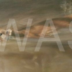 'Out from the Shadows' by Vivien Walters Pastel/Pastel Pencil Unframed 42.5 x 19.5 £875