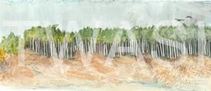 'Raven Beach' by Elle Salt Watercolour 17.5 x 40.5 £220