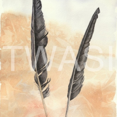 'Corvus' by Elle Salt Watercolour 38 x 24 £140