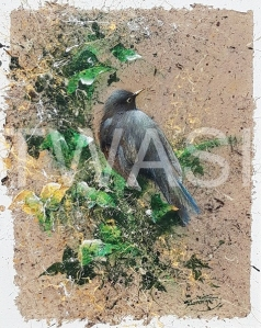 'Blackbird' (framed) by David A Finney Framed Acrylics on handmade paper on canvas board 47 x 57 £280