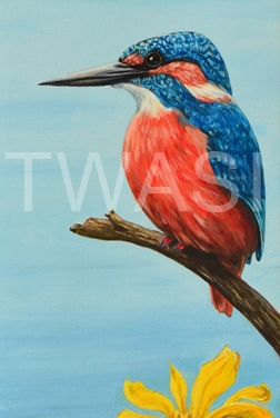 'Kingfisher' by Christopher Colley Oil on Canvas Framed 26.7 x 66.6 £285