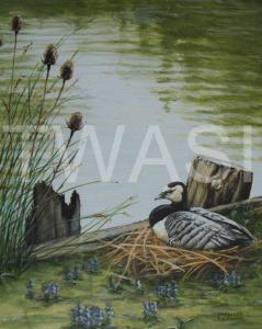 'Lakeside Nest' by Frances Sullivan Acrylic Unframed 33 x 38 £135
