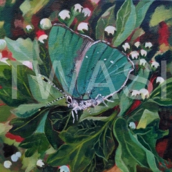 'Pretty in Green' by Gemma Waters Acrylic on box canvas 20 x 20 £105