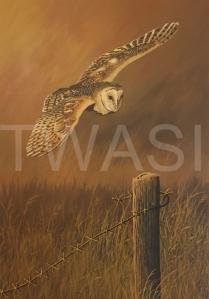 'Clear to Land' by Nick Dawe Acrylic Unframed 42 x 30 £220
