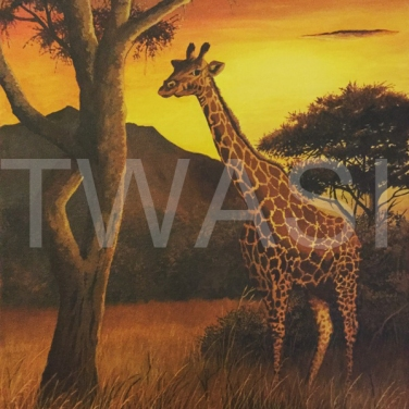 'Darkest Africa' by Nick Dawe Acrylic Unframed 42 x 30 £220