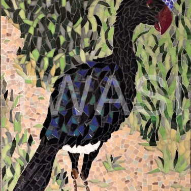 'Sira Curassow Peruvian Game Bird' by Emma Abel Mosaic in fused glass, marble, ceramic, stained glass Unframed 55 x 43 £395