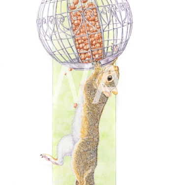 'Pest' by Tracey Anne Sitch Watercolour 25 x 58 £200