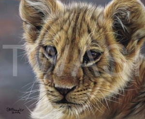 'Young King' by Susan Baxter Pastel Unframed 36cm x 31cm £225