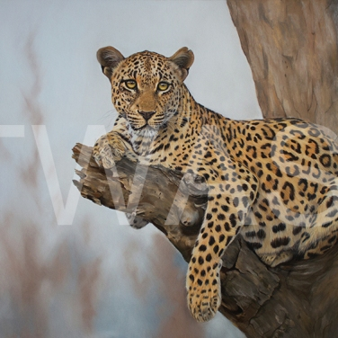 'The afternoon Rest' by Vera Evseeva Pastel Pencils and Soft Pastel Framed 80 x 60 £630