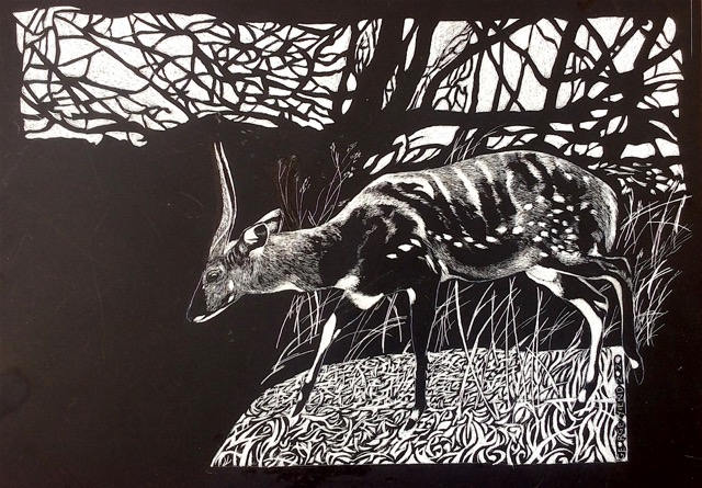 'Bushbuck' by George Yiend