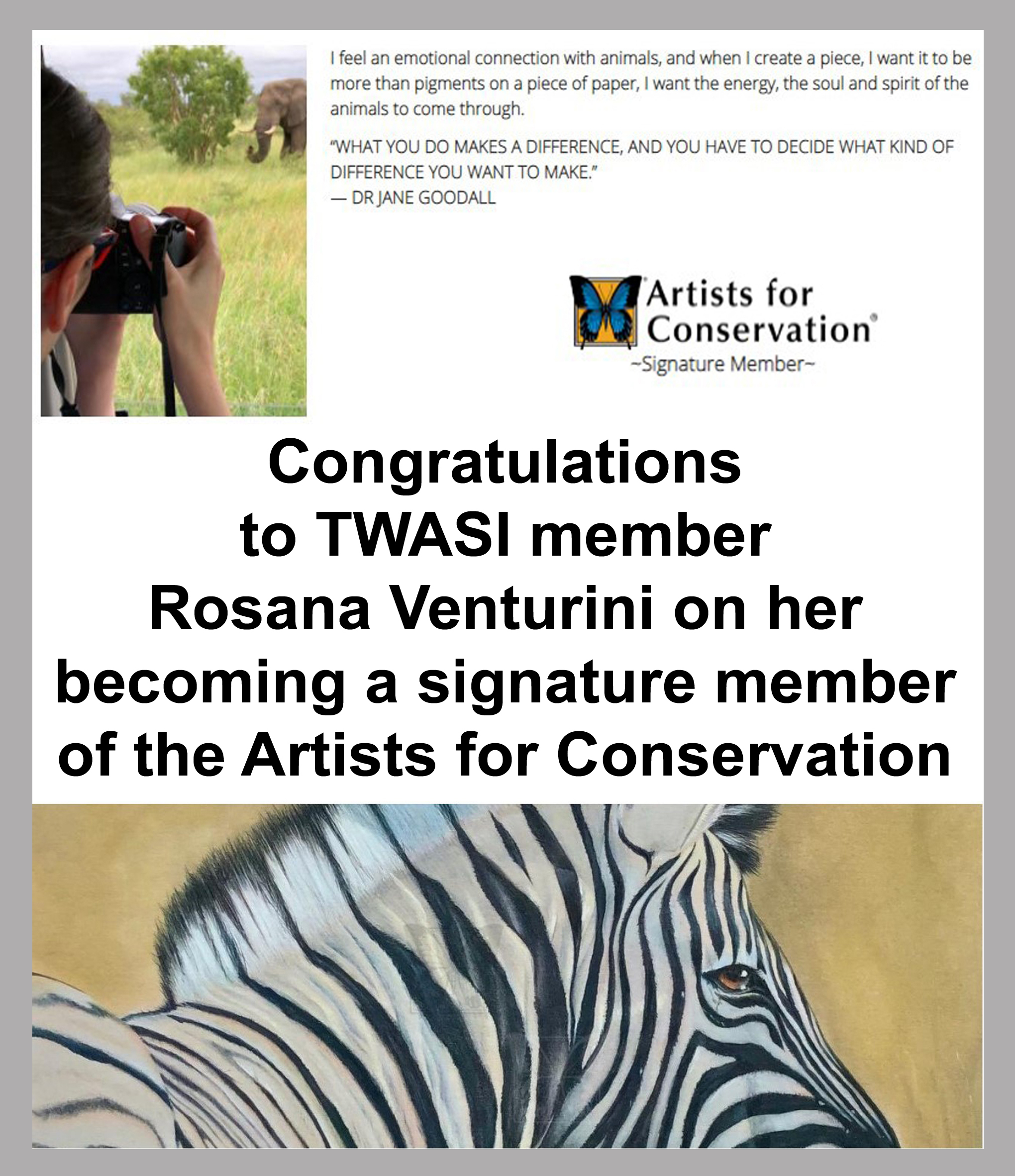Rosana Venturini Artists for conservation