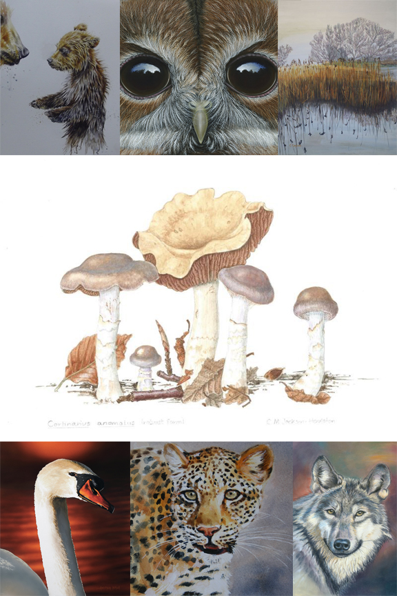 The Wildlife Art Society International Online Gallery 2020 - 2021