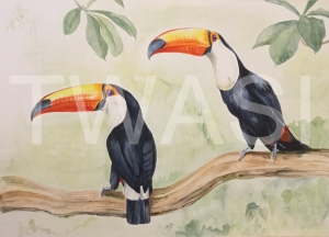 A pair of Toco Toucans from the Pantanal in Brazil by Jean Harlow