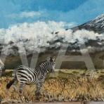 'Zebras' by George Yiend