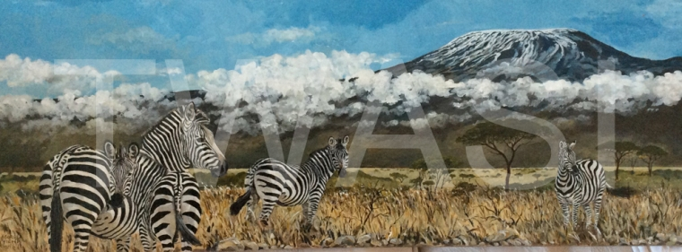 'Zebras' by George Yiend yiend@hotmail.co.uk