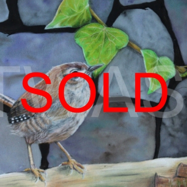 'Jenny Wren' by Frances Daunt Mixed media Unframed 18 x 24- SOLD
