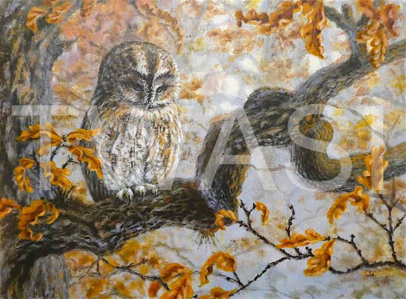 'Autumn owl' by Sarais Crawshaw Acrylic Unframed 40 x 30 cms £200