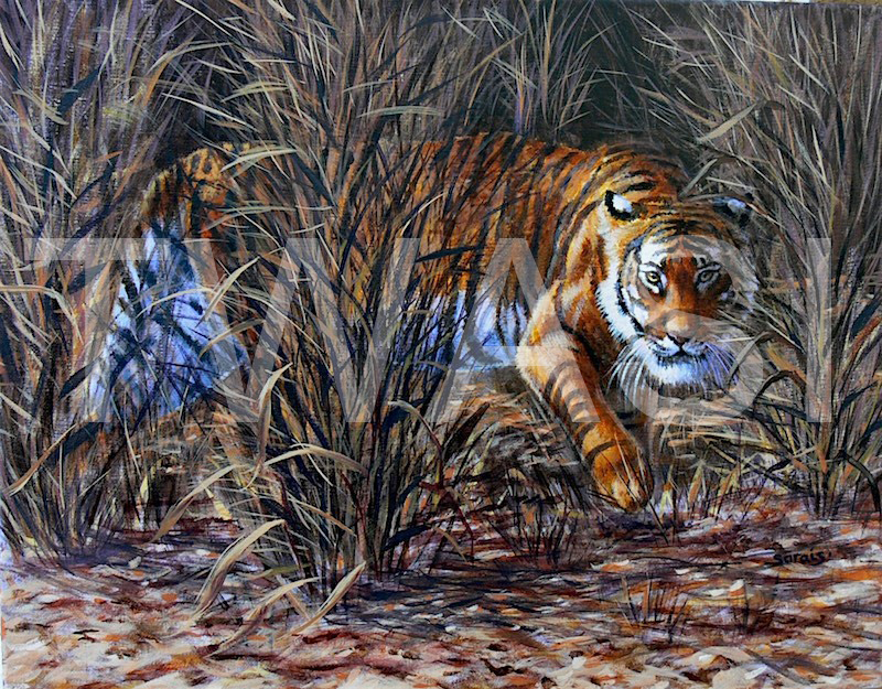 'Burning bright' by Sarais Crawshaw Acrylic Unframed 51 x 41cms £300
