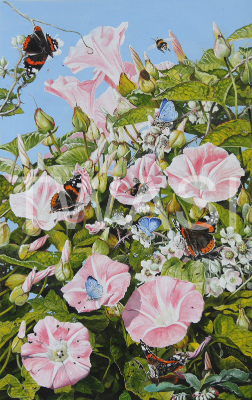 'Hedgerow' by Martin Horsfield Jewels Gouache Framed 40 x 56 cms £225