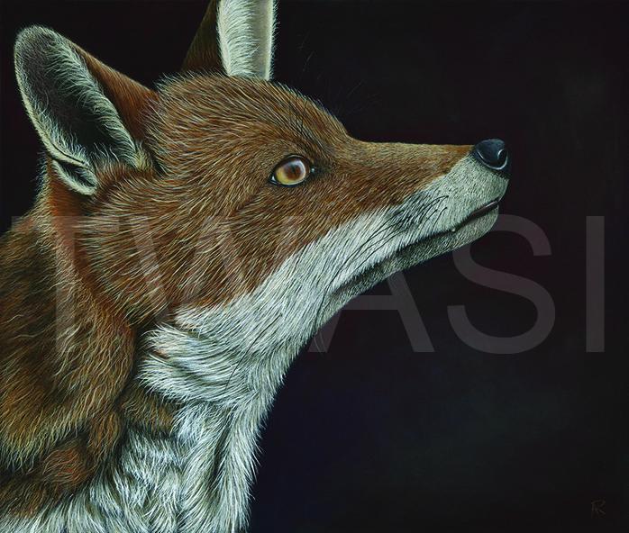 'Innocence' by Ayse Rifat Oil on Canvas Framed 64cm X 56cms Unframed 61 x 51 cms £845