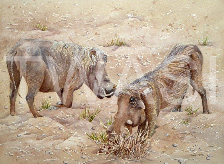 'Snuffling' by Linda Travers Smith Watercolour 28x35cms £145