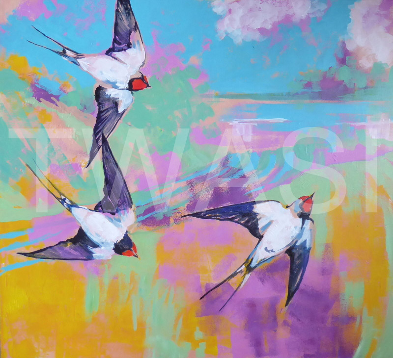 'Swallows' by Jackie Cox Acrylic on canvas 67 x67cms £165