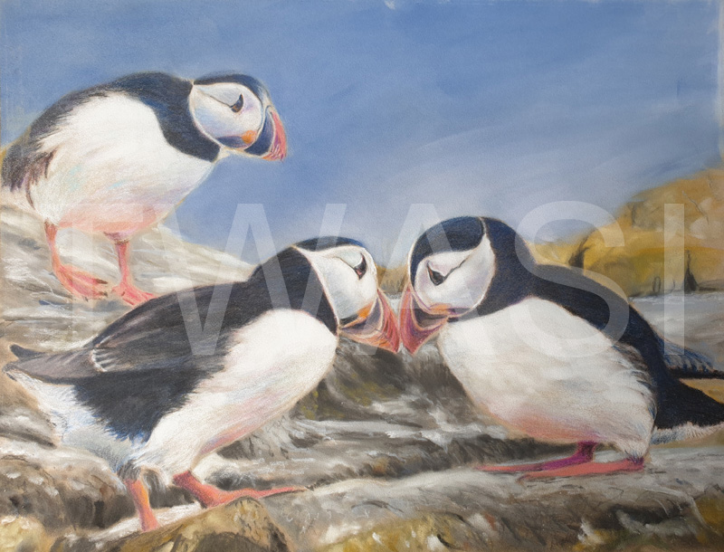 'Two is company, three's a crowd' by Ann Hunt Pastel 40 x 50 cms £295