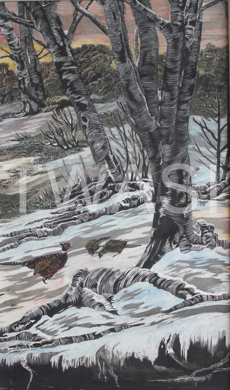 'Winter Pheasants' by Jackie Cox Hand coloured scraperboard 34 x 24 cms £115