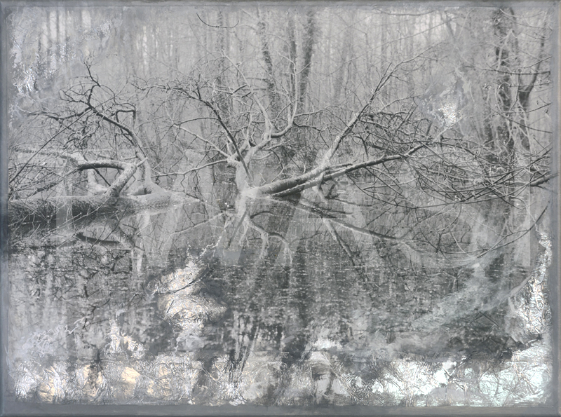 'Winters N° 1' by Ang O Mixed media (original silver photo, collage & painting) 46 cm x 61 cm unframed £ 480