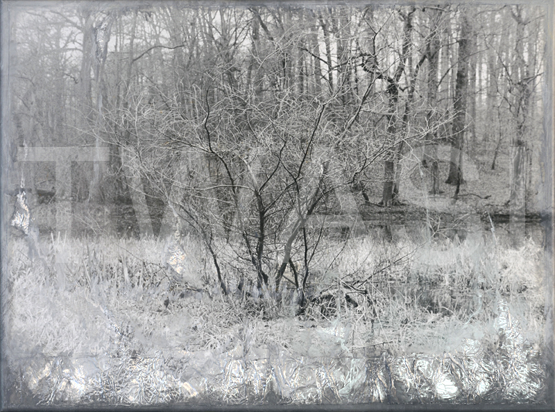 'Winters N° 3' by Ang O Mixed media (original silver photo, collage & painting) 46 cm x 61 cm unframed £ 480