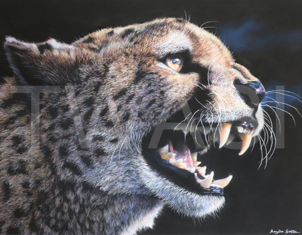 'Fearless' by Angela May Smith Pastel 53 x 45 £425