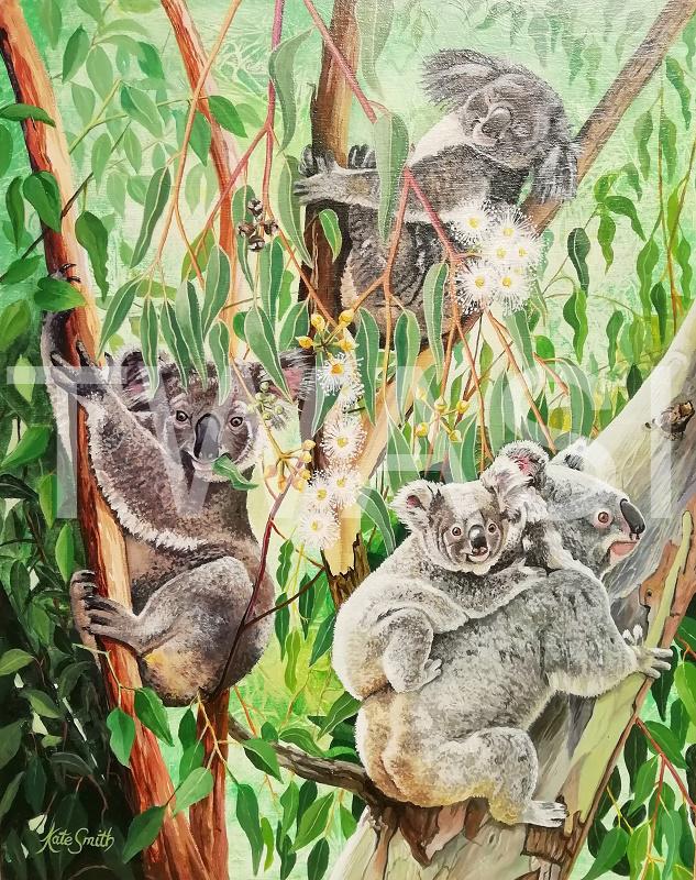'Koalas' by Kate Smith Acrylics Framed 61 x 51cms £235