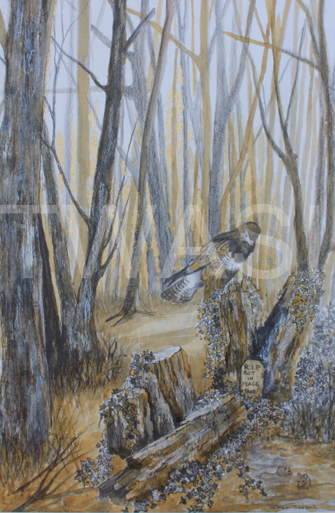 'The ones that got away' by Victoria Parsons Oak Gall Ink 60cm x 35cm £400