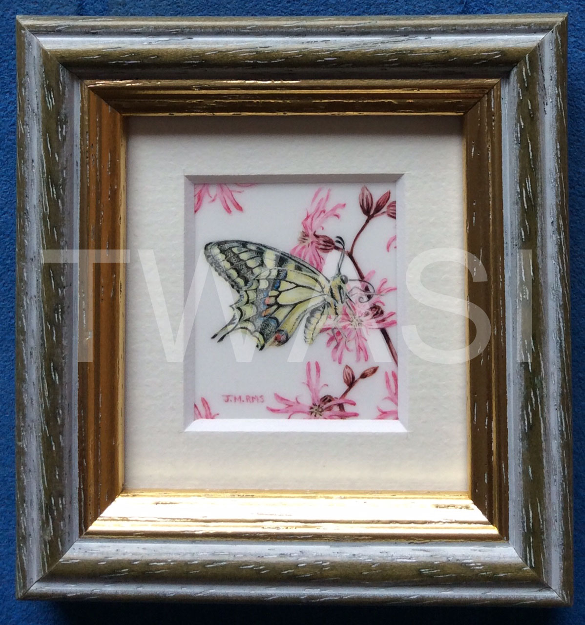 'The Swallowtail' by Jenny Musker £345